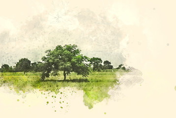 Photo sur Plexiglas Blanc Abstract tree and field landscape on watercolor illustration painting background.