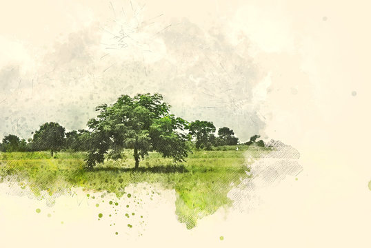 Abstract tree and field landscape on watercolor illustration painting background.