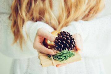 Woman's hands hold christmas or new year gift box.