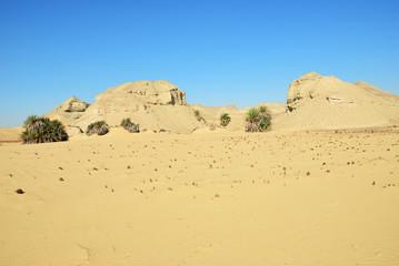 Wall Mural - Landscape of the Western desert Sahara, Egypt