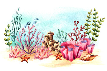 Underwater composition with coral, algae and fish. Watercolor hand drawn illustration, isolated on white background