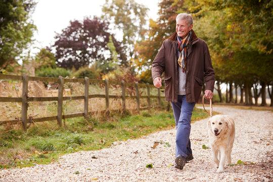 Active Senior Man On Autumn Walk With Dog On Path Through Countryside
