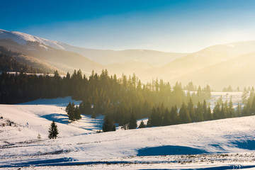 beautiful winter landscape in mountains. glowing fog above the forest on snow covered hills. beautiful bright scenery