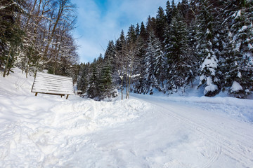 snow covered road winding uphill through forest. wonderful winter adventures