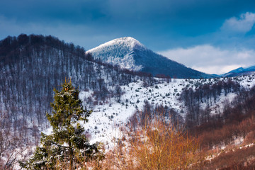 mountains of  Uzhanian National Nature Park in winter. picturesque nature scenery