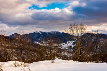 trees on a snowy slope above the valley. gorgeous evening cloudy sky above the ridge.