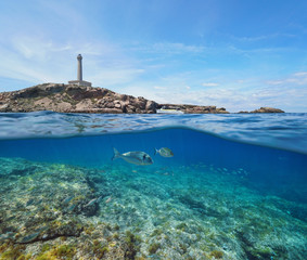 Rocky coast with a lighthouse and fish underwater, split view half above and below water surface, Mediterranean sea, Cabo de Palos, Cartagena, Murcia, Spain