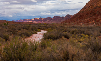 Red muddy river with sun lit cliffs and open field of wild brush