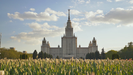The building of Moscow State University. Shooting in the evening summer at sunset against a background of a multicolored flower bed of tulips.