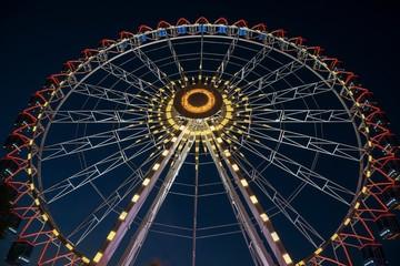 Ferris wheel, Volksfest Cannstatter Wasen 2018, night scene, Bad Cannstatt, Stuttgart, Baden-Wurttemberg, Germany, Europe