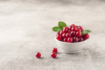 Cranberry. Cranberries with green leaves in small white bowl on the grey table. Fresh cranberries. Copy space. Selective focus. Macro. Closeup.