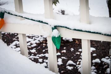 Snow covered green Christmas light