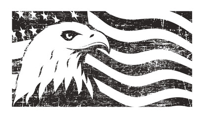 Bald eagle symbol of North America on grunge background with USA flag.