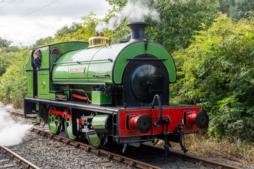 Green steam engine