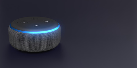 Smart speaker with voice control - 3rd gen.