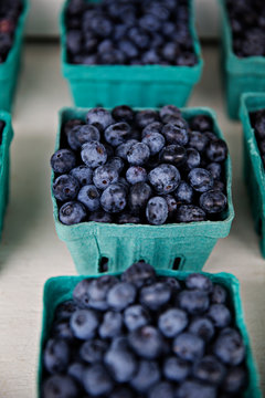High angle view of blueberries in fruit cartons