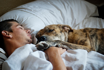Man sleeping with dog in bed
