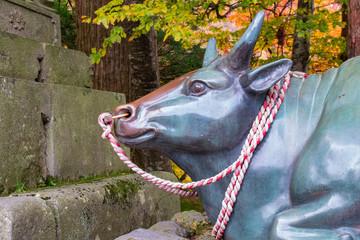 大山寺の撫で牛のアップ Nade-ushi (the rubbing cow), which is believed to help people recover from their diseases when they rub it on the same part as the sick part of their bodies in Japan