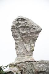Big stone on green nature.