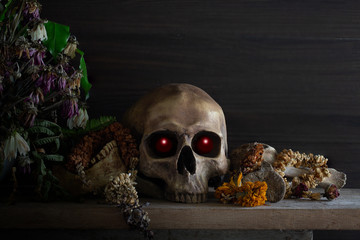 Skull with bone and withered  flowers in the vase whis has old wreath on the plank