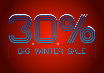 Big Winter Sale 30%