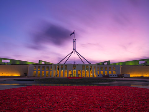 Australian Parliament House forecourt lined with 270,000 handmade poppies to mark 100 years since the end of World War One