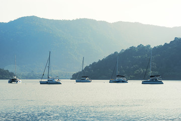 Yachts anchored in bay with mountain background in morning light