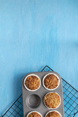 Fresh baked muffins on bright blue background