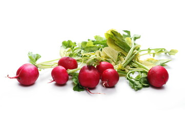 Fresh red radishes with leaves isolated on white background