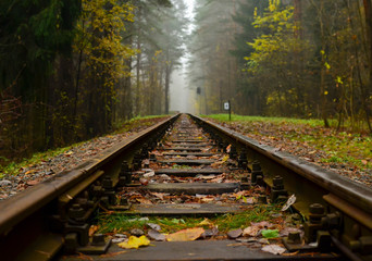 Railway, fog in the forest. Fallen yellow leaves on wooden sleepers. Cloudy autumn weather in November.