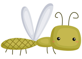 a vector of a cute and adorable dragonfly