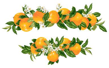 Vector headline decor elementwith grapefruit citrus branches