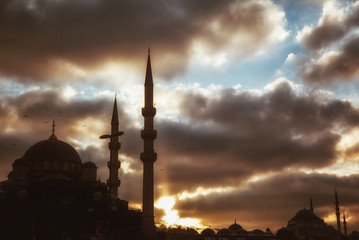 Mosque with birds during sunset - istanbul.
