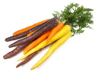 Bunte Karotten