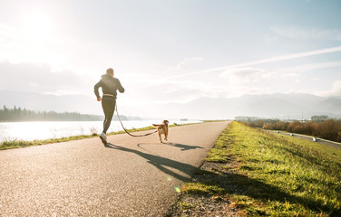 Canicross exercises. Outdoor sport activity - man jogging with his beagle dog