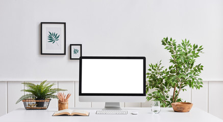 Home office computer room desktop screen vase of plant frame and office room.