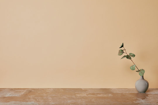 Vase with flower on table on beige background