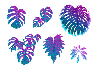 Set of tropical leaves in nein colors