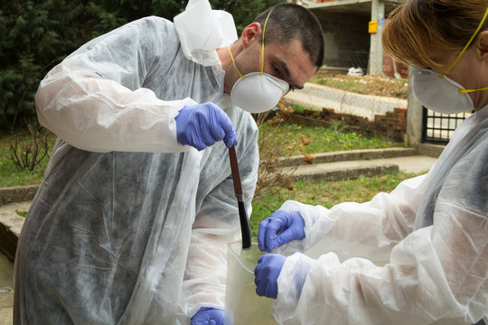A forensics team collects proofs. Crime scene