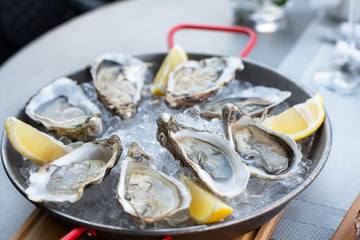Fresh oysters with lemon's slices in ice. Restaurant delicacy. Saltwater oysters dish.