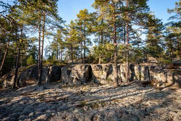 rocky coastline in Finland with few pine trees