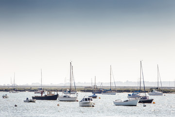 boats of west mersea