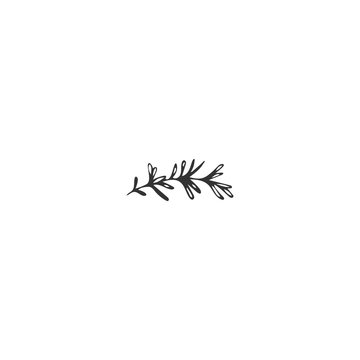 Vector hand drawn object. Kitchen logo element, a sprig of rosemary.