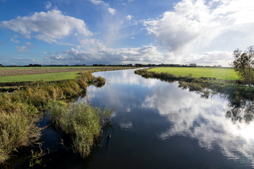 Photo sur Aluminium Riviere Dutch polder landscape in the province of Friesland