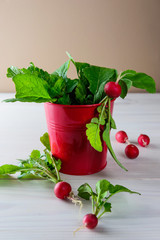 Bunch of radishes in a red bucket