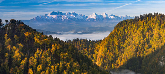 Morning panorama of Tatra mountains over yellow autumn beech forest, Poland