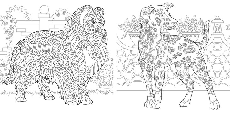 Coloring pages with collie and dalmatian dogs