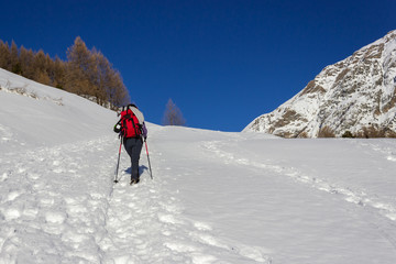 Winter hiking in Aosta valley. Trail in the Grauson walloon, classic itinerary in Cogne valley.