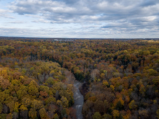 Fall Forest in Midwest Aerial Photography