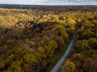 Midwestern Landscape in Fall from Aerial View